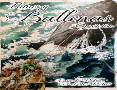 cartel de pesca de cetaceos