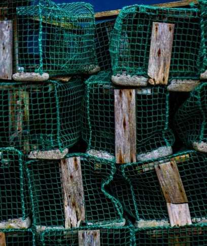 pesca llanes