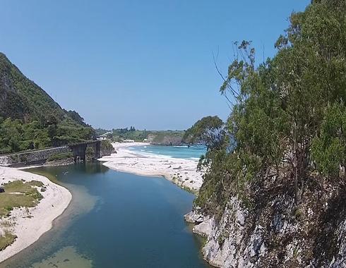 rio bedon