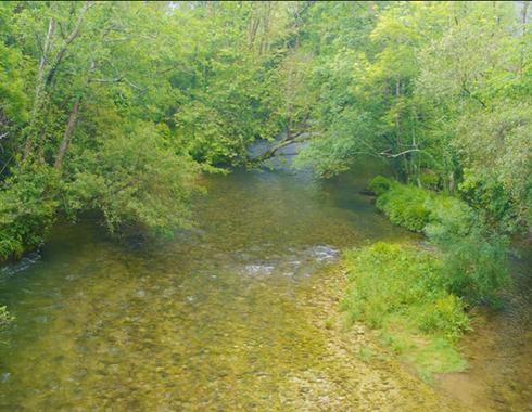 rio puron